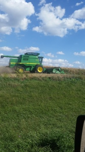 Stevie and his brother, Peter, checking how the combine is working. It's time to roll!